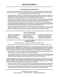 sample resume of executive recruiter hr objective statements sle