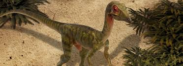 the lost world jurassic park the lost world jurassic park compsognathus 1 1 scale life size