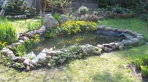 how to set up a backyard pond outdoor furniture design and ideas