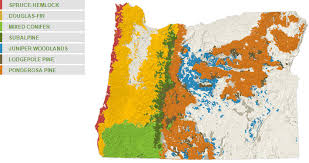 state of oregon forest benefits about oregon s forests