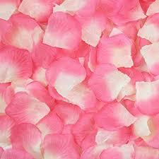flower petals juyo vonsan 1000pcs petals wedding odorless
