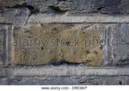 english bond brick wall stock photo royalty free image 69653315