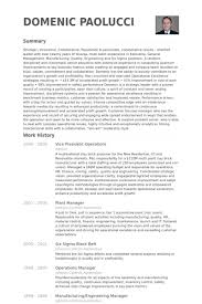 Resume Examples For Operations Manager by Vice President Operations Resume Samples Visualcv Resume Samples