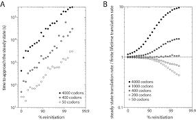 Ribosome Reinitiation Can Explain Length Dependent Translation