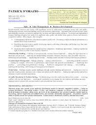 sales position resume examples sales resume sales representative resume samples