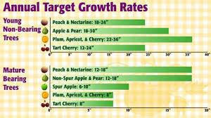 when u0026 how to fertilizer your fruit trees organic gardening blog