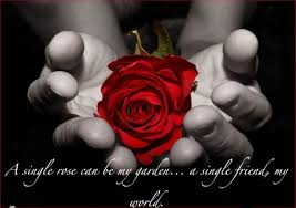 Flower Love Quotes by Friends Red Rose Friendship Love Hands Flower Rose Wallpaper