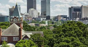 a guide to tree removal in atlanta