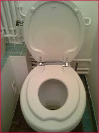 rehausseur siege wc rehausseur toilette adulte 196309 interessant abattant wc enfant