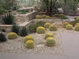 Desert Backyard Ideas 97 Backyard Ideas Desert Desert Landscaping Ideas Basic