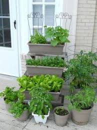 best 25 vegetable garden planters ideas on pinterest planting