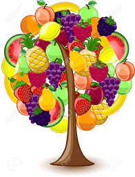 tree with a variety of fruits royalty free cliparts vectors and