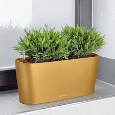 self watering indoor planters 8 best indoor self watering planters for the black thumbed design