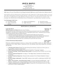 Summary Of Skills Resume Sample Charming Resume Summary Examples