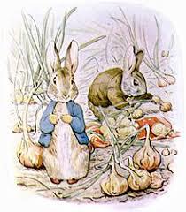 tale benjamin bunny
