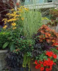 gardening in pots planters container vegetable gardening growing