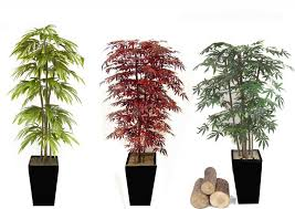 small decorative trees for home ideas decor trends