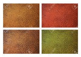 leather grain swatches in red brown green yellow isolated