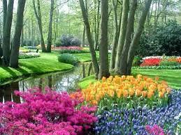 the most extraordinary flower gardens tzyyjiun