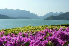 khao sok national park thailand south east asia backpacker