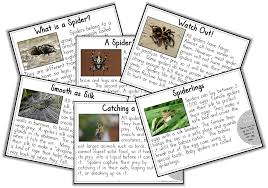 Brown Recluse Map October 2014 Second Grade Stories