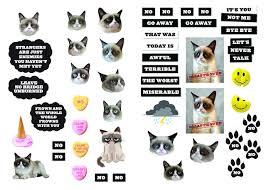 grumpy cat flexi journal with stickers grumpy cat 9781452141817