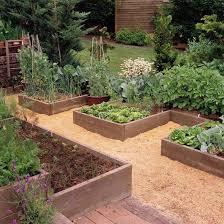 Advantage Of Raised Garden Beds - best 25 raised vegetable gardens ideas on pinterest raised