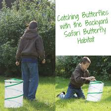 Backyard Safari Habitat by Backyard Safari Butterfly Habitat By Alex Brands
