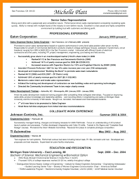 resume template entry level sales representative resume sales representative resume sle