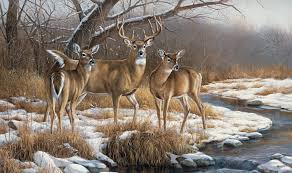 graphics for whitetail deer graphics www graphicsbuzz com hunting wall graphics hunting wall decals mossy oak graphics