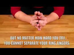 What Finger Does The Wedding Ring Go On by Why We Wear Wedding Rings On Our 4th Finger Full Video Home Made