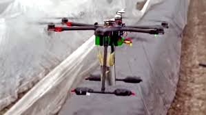 Diy Drone Drone Delivering Asparagus To Dutch Restaurant Crashes And Bursts