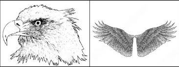 wings photoshop brushes download 29 photoshop brushes for