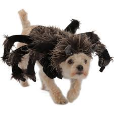 cerberus 3 headed dog spirit halloween halloween costumes for dogs buycostumes com