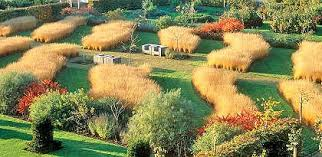 piet oudolf created the walled garden at scampston hall in