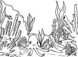 sea plants coloring pages drawn coral coloring page pencil and in color drawn coral