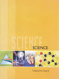 science textbook for class x amazon in ncert books
