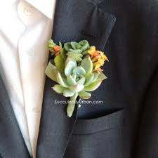Succulent Boutonniere 23 Best Succulents Images On Pinterest Php Boutonnieres And
