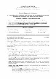 Resume Sample Translator by Student Affairs Resume Samples Services The Most Of A Template The