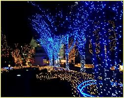 Snowflake Lights Outdoor Blue Led Outdoor Christmas Lights Home Design Ideas