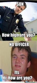 How High Are You Meme - how high are you meme
