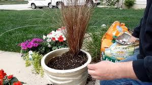 garden ideas plants for pots indoor plants plant tubs patio pots