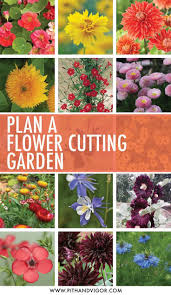 72 best snippets flower cutting garden images on pinterest