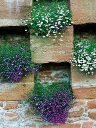 using and decorating garden walls retaining walls walls and