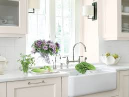 Shaw Farmhouse Sink Protector Best Sink Decoration by The One Thing I Wish Someone Would Have Told Me Before I Bought A