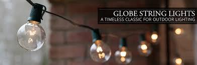 globe string lights yard envy