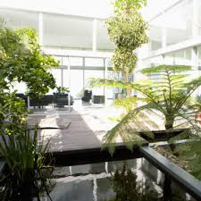 plantes dans la chambre plantes dépolluantes tous leurs secrets et leurs bienfaits