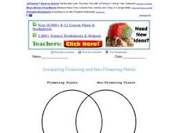 comparing flowering and non flowering plants 3rd 4th grade