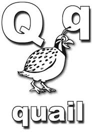Learning Letter Q Coloring Page Bulk Color Coloring Pages Q