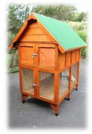 Build Your Own Rabbit Hutch Plans 146 Best Rabbit Images On Pinterest Dwarf Rabbit Netherland